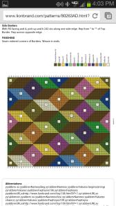 Lion Brand Pattern